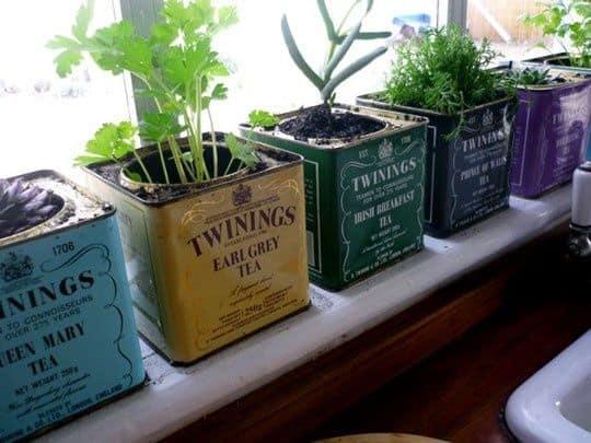 ... tea tins , keep them around as decor. Such a cute little herb garden