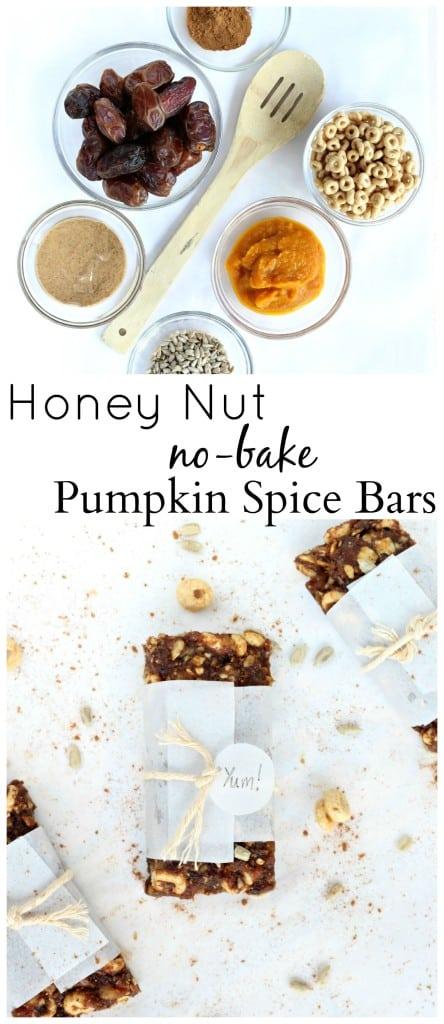 Honey-Nut-No-Bake-Pumpkin-Bars-9
