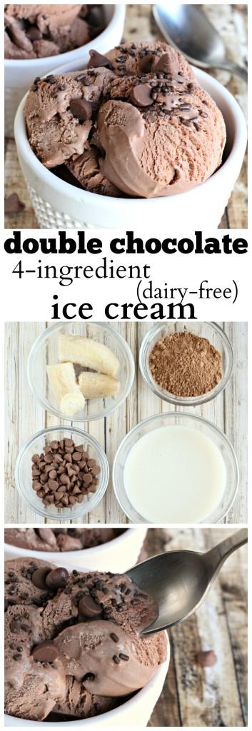 Double-Chocolate-Dairy-Free-Ice-Cream-6