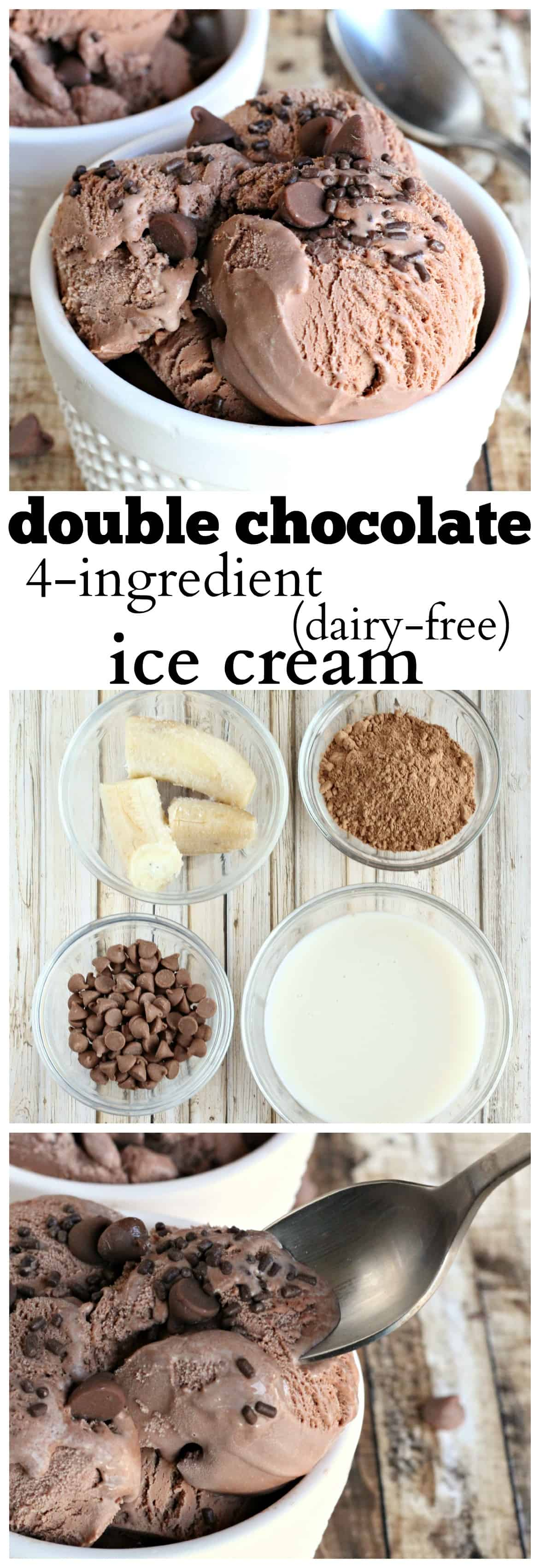 Double chocolate 4 ingredient dairy free ice cream life a little double chocolate dairy free ice cream 6 ccuart Images
