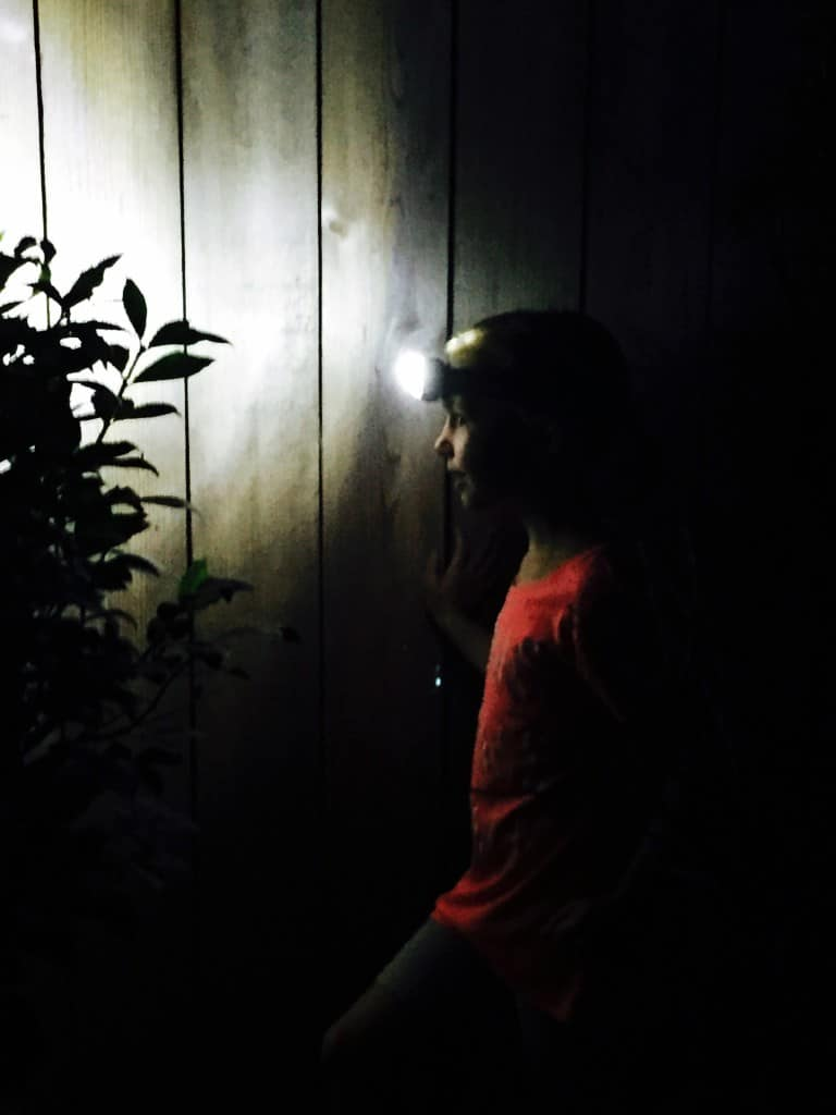 Outdoor-Nighttime-Family-Activities-4
