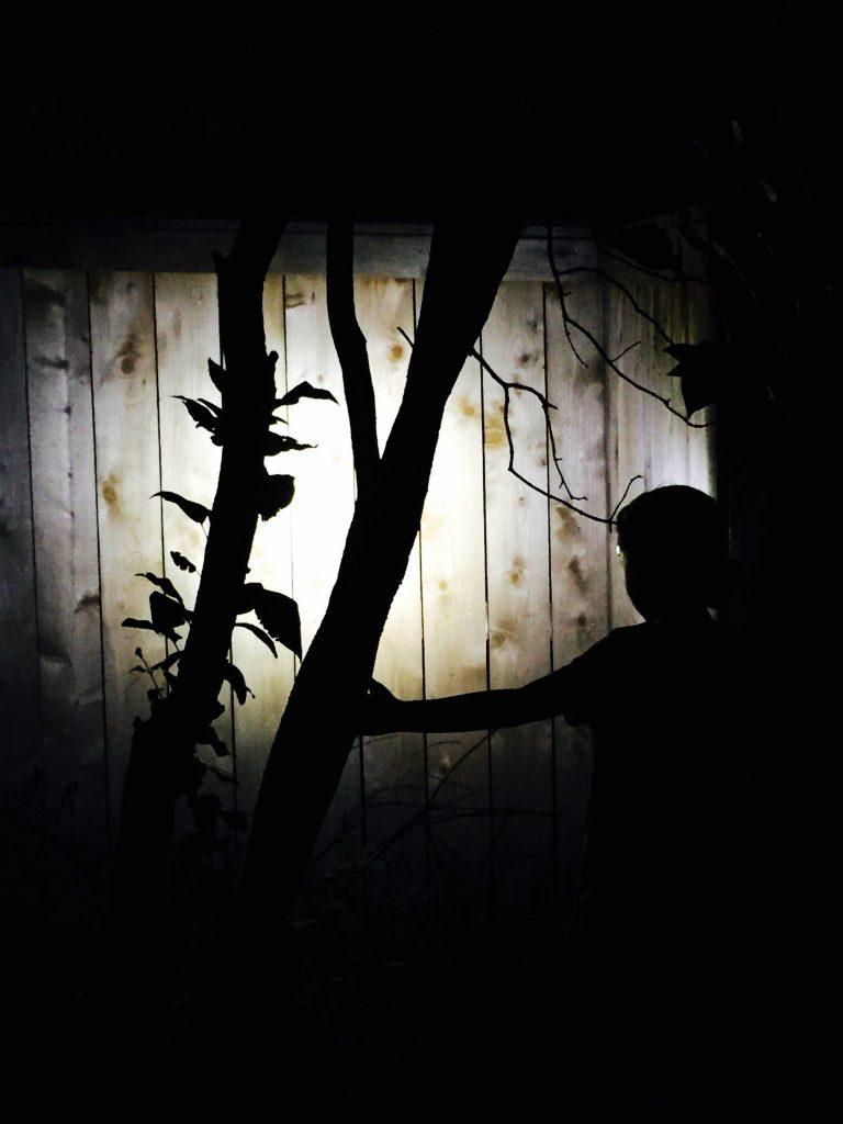 Outdoor-Nighttime-Family-Activities-5