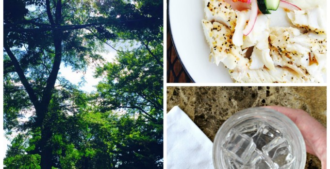 Hit the Reset Button: Getting Back on Track & Staying Inspired